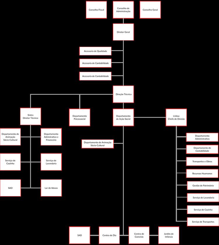 Organograma-geral